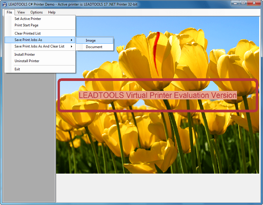 Screenshot of LEADTOOLS Virtual Printer Module