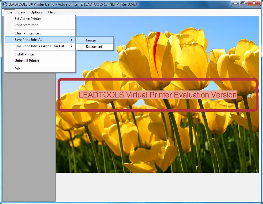 Captura de pantalla de LEADTOOLS Virtual Printer Module