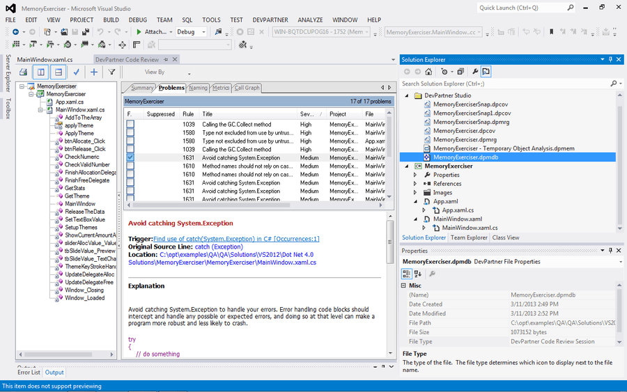 Screenshot of DevPartner Studio Professional Edition, Named Users