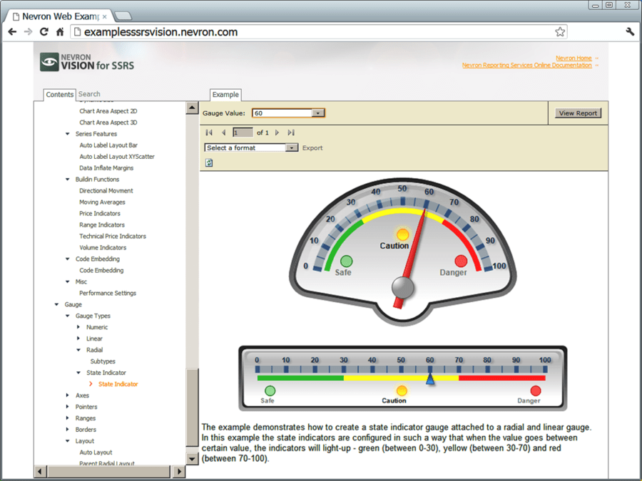 Screenshot of Nevron Gauge for Reporting Services