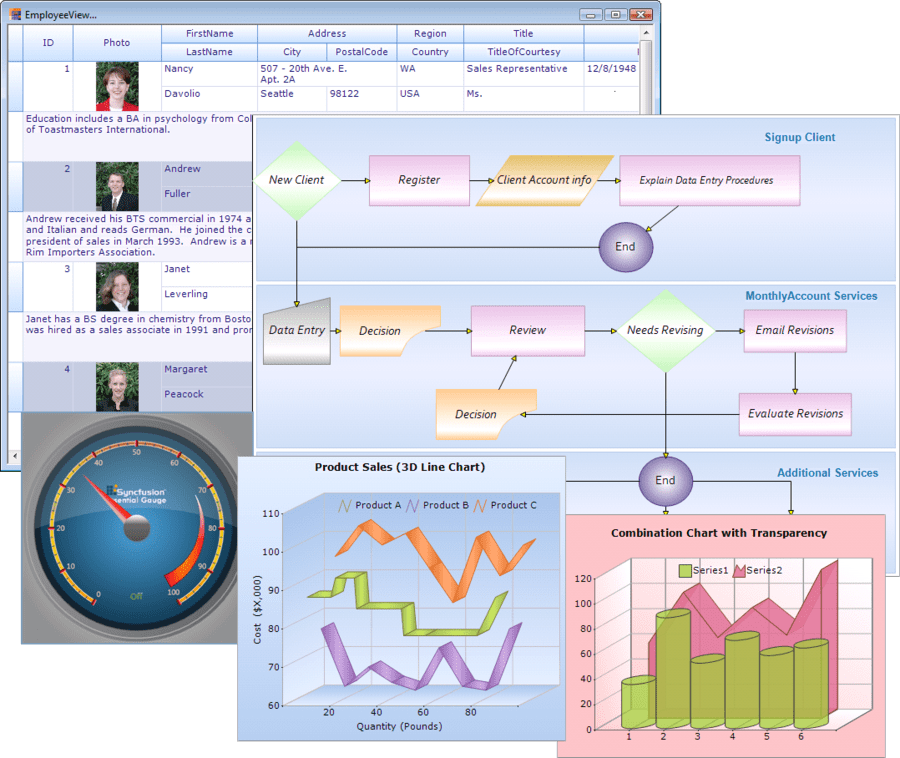 Screenshot of Syncfusion Essential Studio User Interface Edition