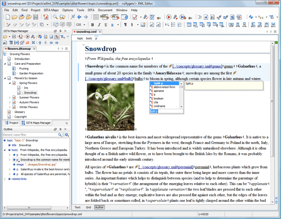 Screenshot of oXygen XML Editor Enterprise