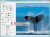 Layer Imaging SDK for .NET(日本語版) について