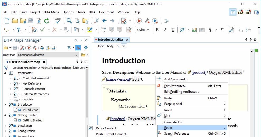 Oxygen Xml Editor 20