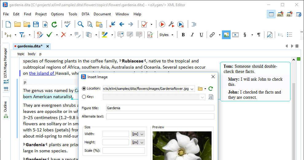 Oxygen XML Editor Enterprise V21 0