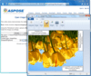 Aspose.Imaging for .NET V18.9