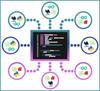 ActiveState Platform - 2020年8月
