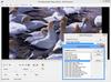LEADTOOLS Multimedia Suite SDK v21