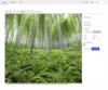 Kendo UI + Telerik UI for PHP R3 2020