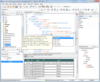 oXygen XML Developer adds XPath/XQuery Builder