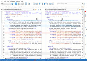 oXygen XML Developer V18 adds Three-way File Comparison