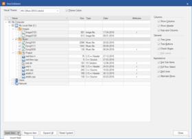 BCGSuite for MFC v25.0