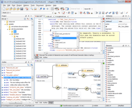 oXygen XML Developer Professional 18.1