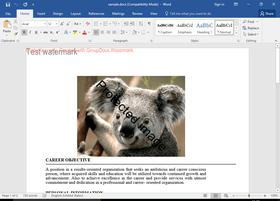 GroupDocs.Watermark for .NET 17.8.0