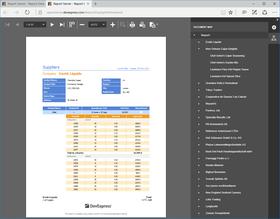 DevExpress Report Server 17.1.8