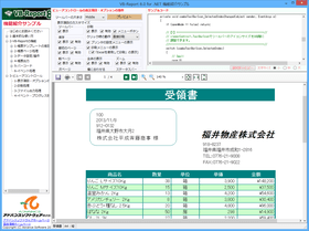 VB-Report 8(日本語版)v8.0.5270.1830