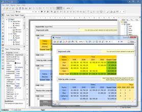 FastReport VCL Enterprise Edition v6.1