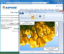 Aspose.Imaging for .NET V18.6