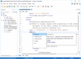 Oxygen XML Editor Enterprise V21.1