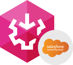 Devart SSIS Data Flow Components for Salesforce Marketing Cloud V1.10.1027
