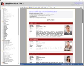FastReport.Net Enterprise 2020.2