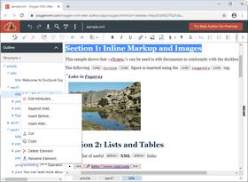 Oxygen XML Web Author V22.1
