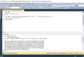 MsSqlPGP 1.1.4