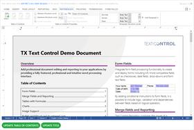 Text Control DS Server 업데이트