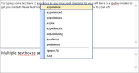 RapidSpell Web Java v5.3