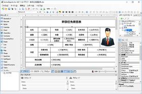 ActiveReports for .NET Professional(日本語版)11.0J SP2