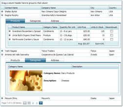 ASPxGridView and Editors Suite updated