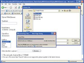 DEXTUpload .NET Pro supports ASP.NET 4.0