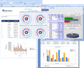 Reporting suite supports Office 2010