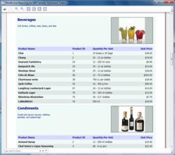 WPF Reporting tool adds report designer