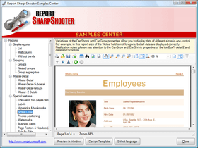 Report Sharp-Shooter adds quick toolbar