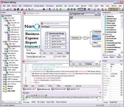 Altova XMLSpy 2011r3 が PXF 形式ファイルをサポート