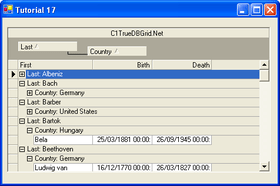 C1 True DBGrid for WinForms improves filtering