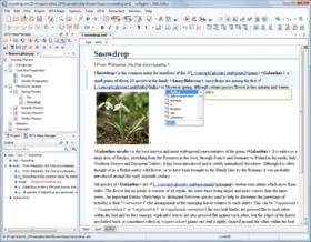 oXygen XML Editor improves Syntax Highlighting