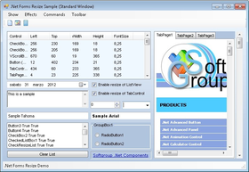 .Net Forms Resize updated