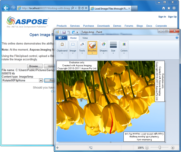 About Aspose.Imaging for .NET: Add image processing capabilities to your .NET applications.