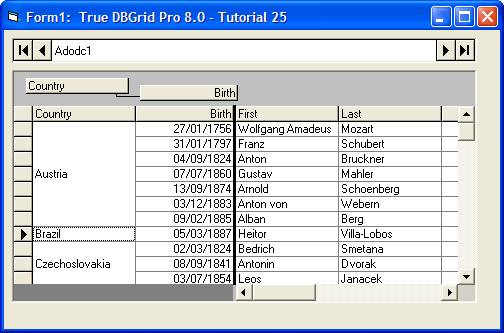 About True DBGrid Pro: Add powerful data bound grids to your application.