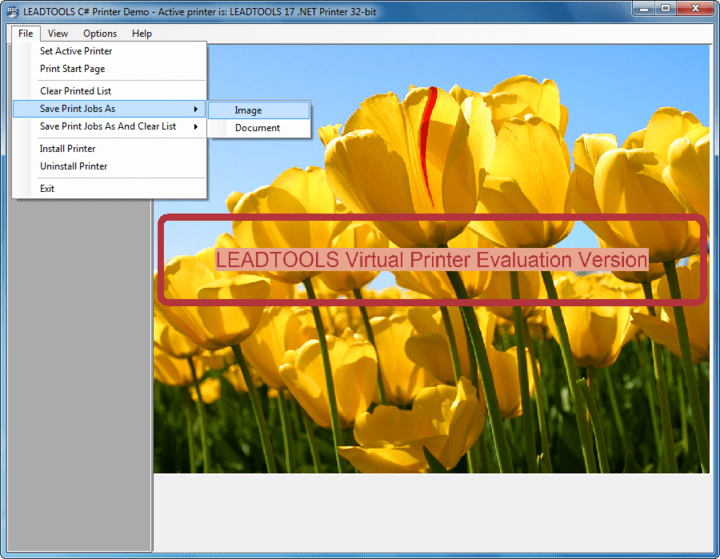 About LEADTOOLS Virtual Printer Module: Capture print output from any application such as Word, Excel and web browsers and save as EMF or any of 150+ supported image formats.