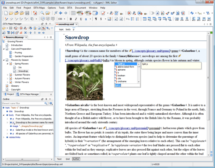 About oXygen XML Editor Enterprise: Cross platform XML editor.