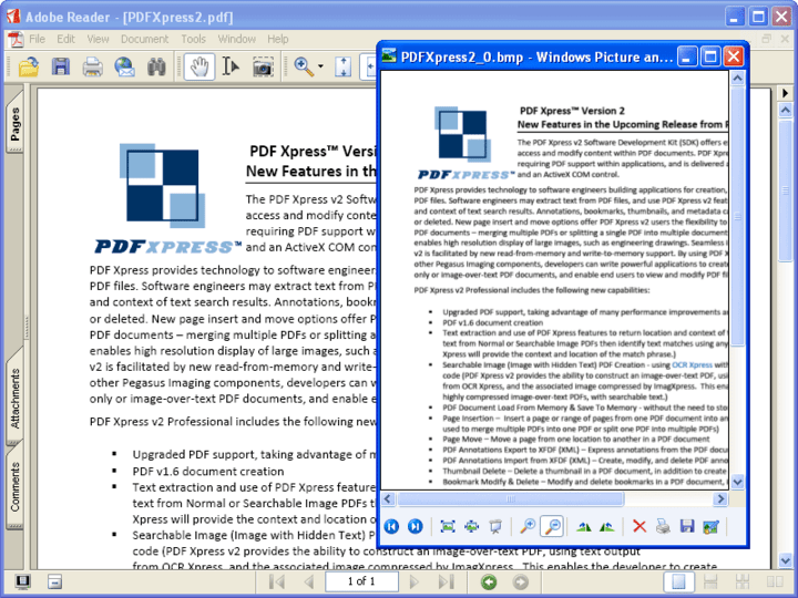 <strong>PDFXpress .NET 스크린샷</strong>: PDF Xpress allows you to convert a PDF document into image formats by using the RenderPage method.