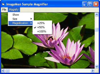 <strong>Magnification Property</strong>: Apply variable degrees of magnification to your images. The size and magnification can be easily adjusted.<br /><br />