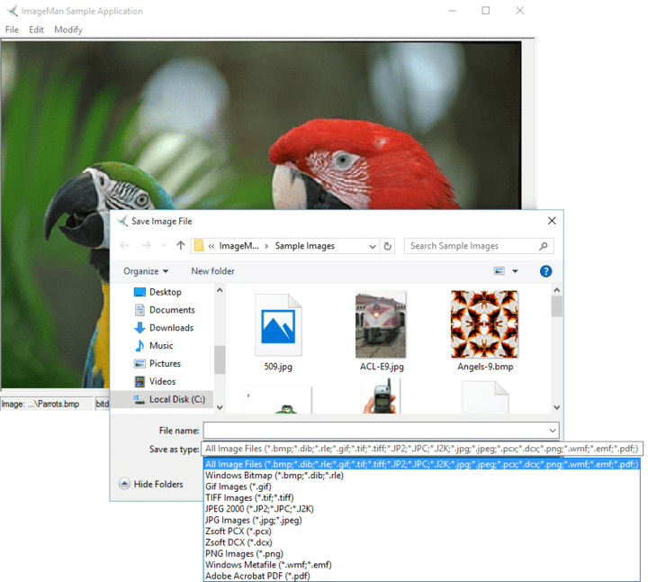 <strong>Read and Write Files</strong>: ImageMan.NET supports reading and writing images to and from files and .Net streams. <br /><br />