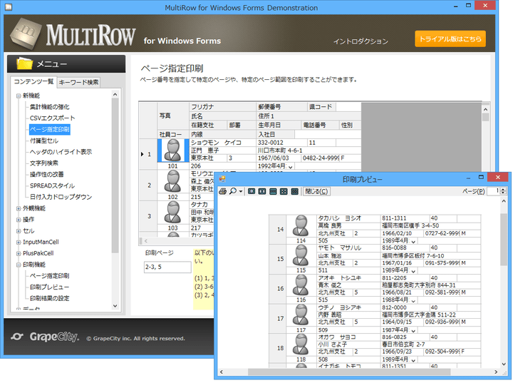 <strong>データ出力、印刷機能</strong>: CSV形式でグリッドのデータを出力できます。また、「3−5ページ」や「1、3、5ページ」などのように指定したページだけを印刷することができます。 <br /><br />