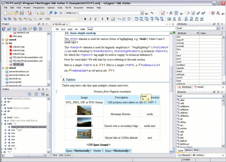 <strong>oXygen XML Editor Professional (英語版+日本語版) のスクリーンショット</strong>: The XML Author keeps only the relevant authoring features of XML Editor enhancing the authors productivity by providing a clean and easy to use interface specially suited for content authors. 